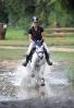 Das New Forest Pony_15