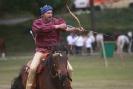 Das New Forest Pony_19