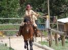 Das New Forest Pony_23