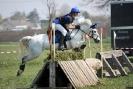 Das New Forest Pony_25