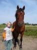 Das New Forest Pony_26