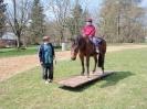 Das New Forest Pony_28