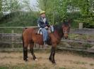 Das New Forest Pony_29