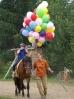 Das New Forest Pony_31