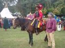 Das New Forest Pony_32