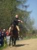 Das New Forest Pony_33