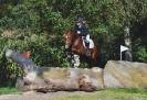 Das New Forest Pony_36