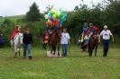 Das New Forest Pony_3