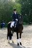 Das New Forest Pony_43