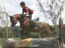 Das New Forest Pony_4