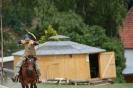 Das New Forest Pony_5